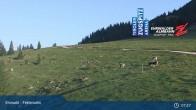 Archiv Foto Webcam Feldernalm in Ehrwald 01:00