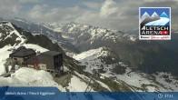 Archiv Foto Webcam Bergstation Fiescheralp-Eggishorn (Aletsch Arena) 11:00