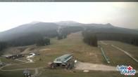 Archived image Webcam Base Area Lake Louise 11:00