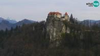 Archiv Foto Webcam Bled: Blick auf See und Burg 07:00