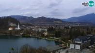Archiv Foto Webcam Bled: Blick auf See und Burg 11:00