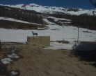Archived image Webcam Administration - Chapelco 09:00