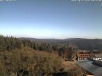 Archiv Foto Webcam Bayerischer Wald - Mitterdorf 10:00