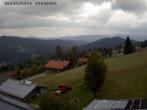 Archiv Foto Webcam Bayerischer Wald 11:00