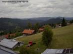 Archiv Foto Webcam Bayerischer Wald 14:00