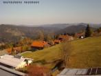 Archiv Foto Webcam Bayerischer Wald 13:00
