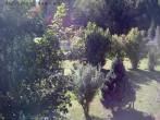Archiv Foto Webcam Bayerischer Wald: Hotel Waldeck in Mitterdorf 06:00