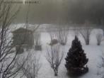 Archiv Foto Webcam Bayerischer Wald: Hotel Waldeck in Mitterdorf 04:00