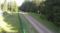 Archiv Foto Webcam Loipe am Rennsteig (Stein 16) 02:00
