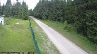 Archiv Foto Webcam Loipe am Rennsteig (Stein 16) 04:00