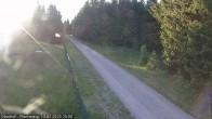 Archiv Foto Webcam Loipe am Rennsteig (Stein 16) 14:00