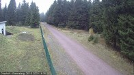 Archiv Foto Webcam Loipe am Rennsteig (Stein 16) 11:00