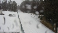 Archiv Foto Webcam Loipe am Rennsteig (Stein 16) 08:00