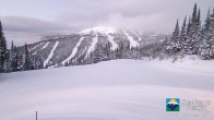 Archiv Foto Webcam Sun Peaks: Sundance Sesselbahn Bergstation 01:00