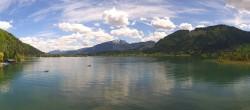 Archiv Foto Webcam Walchsee im Kaiserwinkl in Tirol 04:00