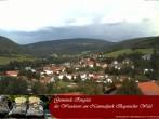 Archiv Foto Webcam Nationalparkgemeinde Ringelai 06:00