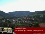 Archiv Foto Webcam Nationalparkgemeinde Ringelai 08:00