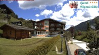 Archiv Foto Webcam Hotel Alpenstüble, Mittelberg 11:00