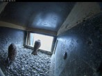 Archived image Webcam Aachen Cathedral: Falcons nest 00:00