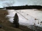 Archived image Webcam Todtnauberg - Stübenwasen ski lift 12:00
