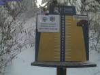Archiv Foto Webcam Neuschnee - Skigebiet Mt Spokane Ski Area 08:00