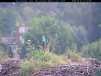 Archiv Foto Webcam Bayerischer Wald: Blick auf das Storchennest in Grafenau 06:00