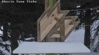 Archived image Webcam Arapahoe Basin – Snow Stake 00:00