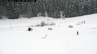 Archiv Foto Webcam Willingen: Biathlon Rollerbahn 02:00