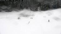 Archiv Foto Webcam Willingen: Biathlon Rollerbahn 08:00