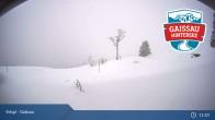 Archiv Foto Webcam Gaissau-Hintersee: Latschenalm 05:00