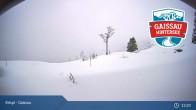 Archiv Foto Webcam Gaissau-Hintersee: Latschenalm 07:00