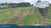 Archiv Foto Webcam Zelezna Ruda - Skiareal Nad Nadrazim 11:00