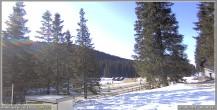 Archiv Foto Webcam Pokljuka: Wetterstation am Biathlonstadion 02:00