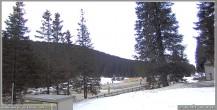 Archiv Foto Webcam Pokljuka: Wetterstation am Biathlonstadion 04:00