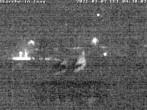 Archived image Webcam Isny – Stork's nest 22:00