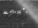 Archived image Webcam Isny – Stork's nest 20:00