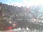 Archiv Foto Webcam Naturbad Aschauerweiher 09:00
