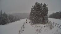 Archived image Webcam Upper station Sternsteinlifte 00:00