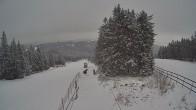Archived image Webcam Upper station Sternsteinlifte 02:00