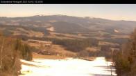 Archiv Foto Webcam Wenigzell: Schneeland 04:00