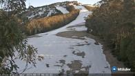 Archived image Webcam Mt Buller - Slope Little Buller Spur 00:00