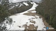 Archived image Webcam Mt Buller - Slope Little Buller Spur 12:00
