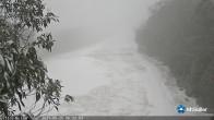 Archiv Foto Webcam Mt Buller: Abfahrt Little Buller Spur 00:00