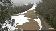 Archiv Foto Webcam Mt Buller: Abfahrt Little Buller Spur 08:00