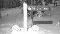 Archiv Foto Webcam Beaver Creek Schneehöhe 00:00