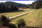 Archiv Foto Webcam Ferienhaus Carola, Hinterzarten 02:00