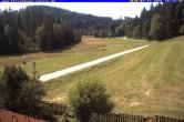 Archiv Foto Webcam Ferienhaus Carola, Hinterzarten 04:00