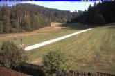 Archiv Foto Webcam Ferienhaus Carola, Hinterzarten 12:00