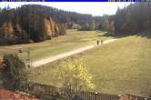 Archiv Foto Webcam Ferienhaus Carola, Hinterzarten 07:00