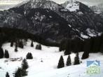 Archiv Foto Webcam Bergstation Hornbahn, Blick Rodelbahn 08:00